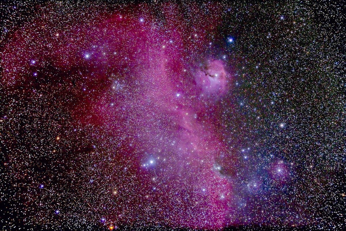 IC 2177 Seagull Nebula Complex