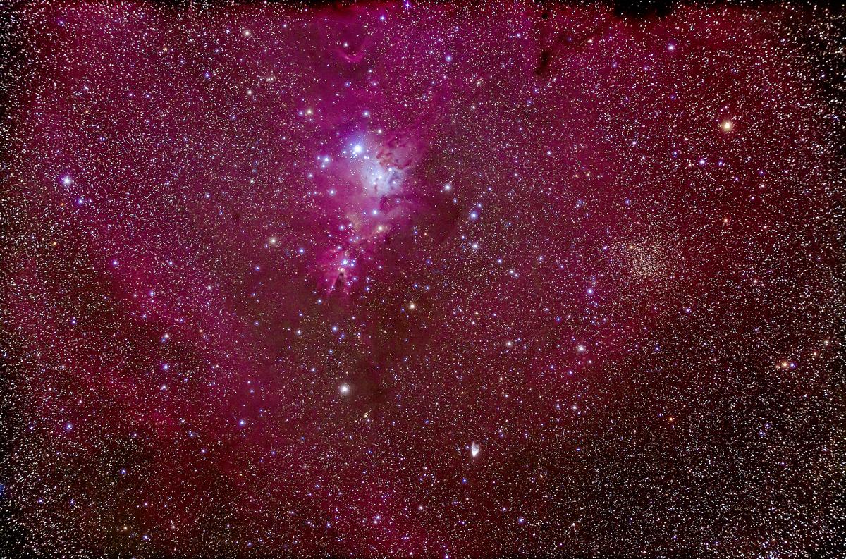 NGC 2264 Christmas Tree Cluster & Cone Nebula