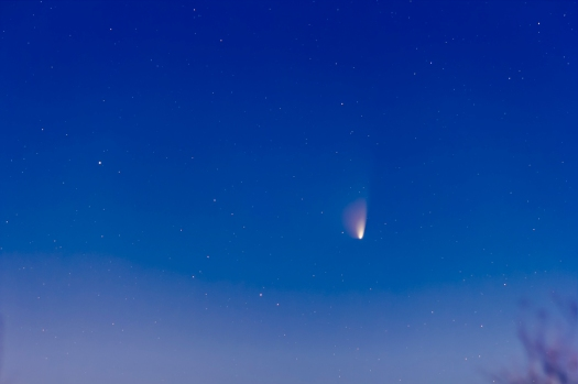 Comet PANSTARRS in Moonlight (March 23, 2013)