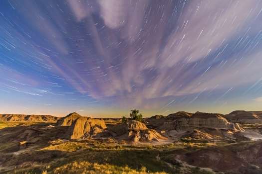 Dinosaur Park Star Trails (May 26, 2013)