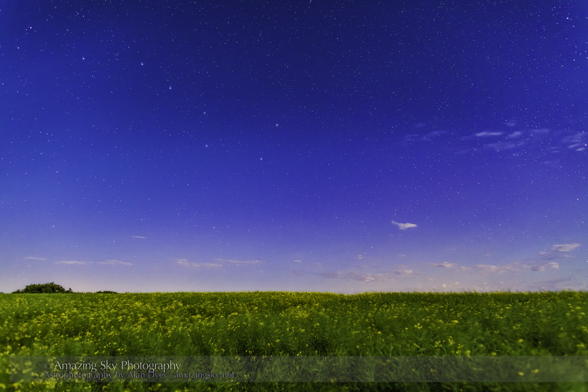 Big Dipper over Canola Field #2 (July 26, 2013)