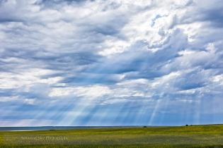Daytime Crepuscular Rays #4 (July 24, 2013)