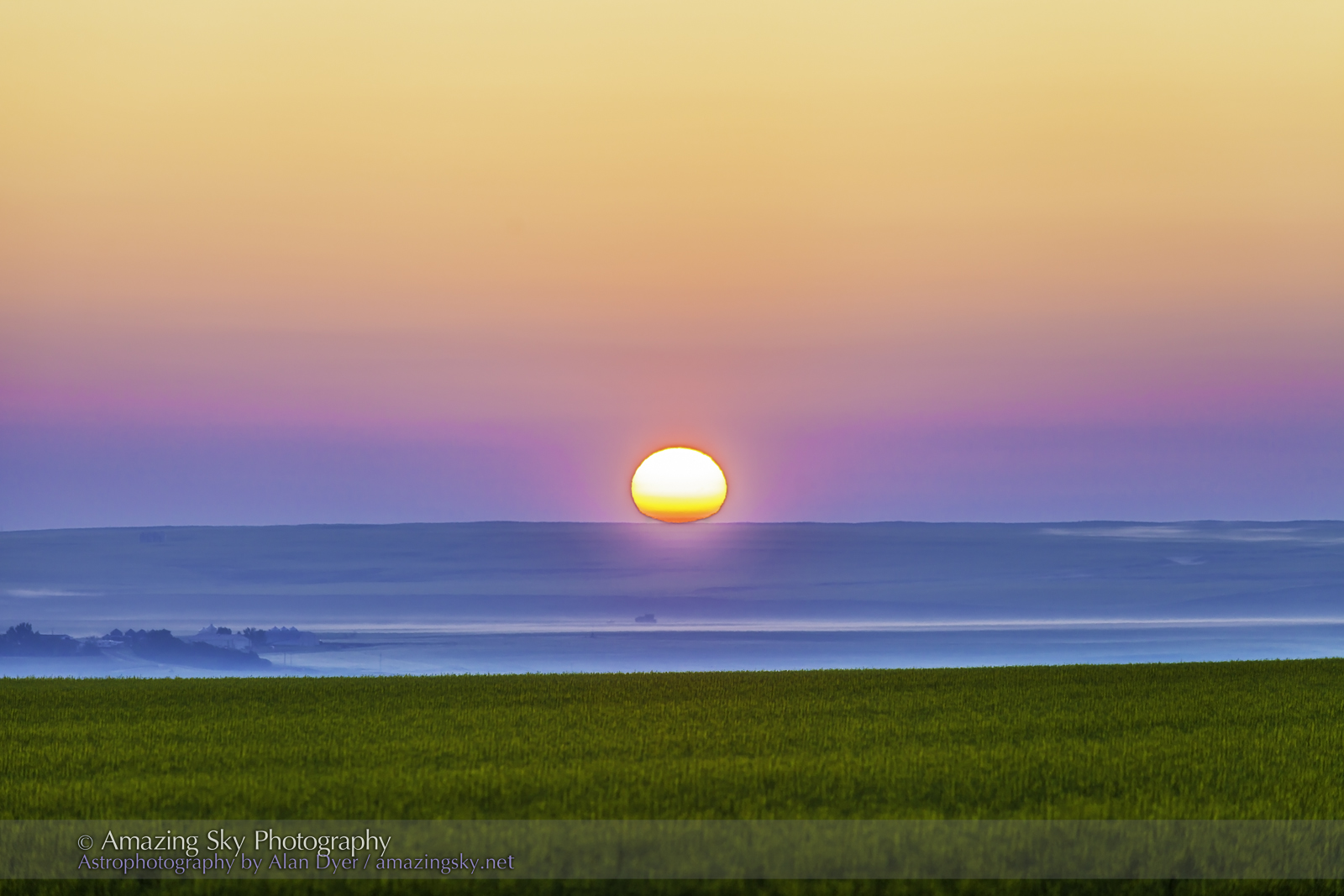 Sunrise on a Canola Field (July 9, 2013)