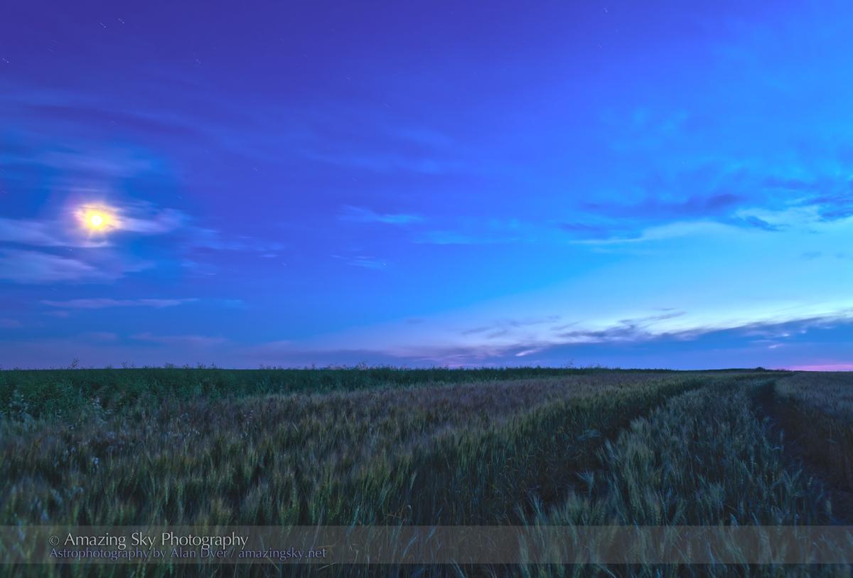 Wheatfield Moon (Aug 14, 2013)