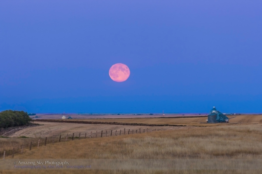 Harvest Moonrise #2 (Sept 19, 2013)
