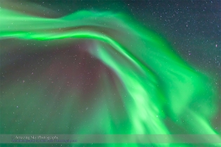 Aurora - Feb 3-4, 2014 (Zenith Curtains)