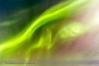 Aurora - Feb 7, 2014 (Zenith Curtains)