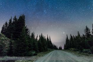 Pleiades Rising Down the Road