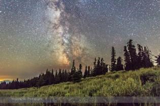 Sagebrush and Stars