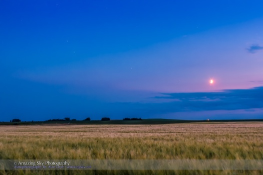 Wheatfield Moon and Planets
