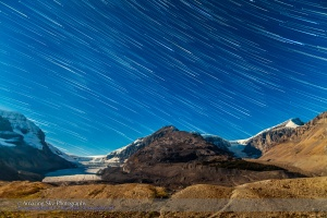 Star Trails over Columbia Icefields