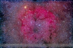 IC 1396 & Garnet Star in Cepheus