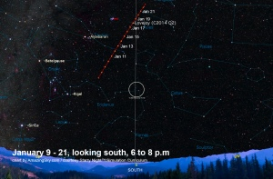 Comet Lovejoy near Pleiades