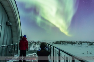 Aurora from Churchill #4 (Feb 20, 2015)