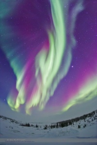 Auroral Curtains in Green & Magenta #2