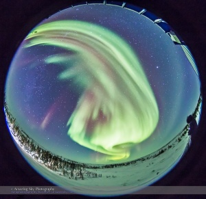 All-Sky Auroral Curtains (Feb 13, 2015)