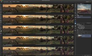 Noise - Nikon