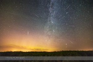 "The Perseid meteor shower on peak night of Wednesday, August 12, 2015, showing meteors radiating from the ""radiant point"" in northern Perseus, then rising in the northeast sky. One bright sporadic, non-Perseid meteor is at left, and a small sporadic is near the horizon at right. The meteor at far left, top, may be a satellite streak.  The Andromeda Galaxy is at upper right. A dim aurora is at left in the northeast. The setting is a ripening canola field at home.  This is a stack of 16 images, one for the ""base layer"" ground and sky, containing a bright meteor, and 15 other images taken as part of the same sequence, each containing a meteor, layered with Photoshop using Lighten blend mode. I rotated each of the additional ""meteor layers"" around Polaris at upper left, so the sky aligned closely, putting the meteors in close to their correct position relative to the stars, to accurately illustrate the radiant effect. This was necessary as this sequence was shot with a fixed, non-tracking camera (the Canon 6D) using a 14mm Rokinon lens at f/2.8. Each exposure was 1 minute at ISO 3200. The 16 meteor frames came from a set of 212 frames taken over 3.5 hours. I layered in only the frames with meteors.  Frames were taken from 11 pm to 2:30 am MDT."