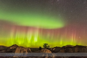 The Northern Lights over the badlands of Dinosaur Provincial Park, Alberta, on September 11, 2015. This is one frame from a 280-frame time-lapse sequence. Although, in this image the ground came from a later exposure in the sequence when passing car headlights lit the ground briefly on an otherwise dark, moonless night, to help sculpt the ground. This was with the Nikon D750 and 24mm lens for 15 seconds at f/2.8 and ISO 6400.