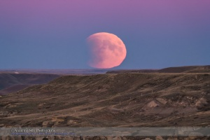 The Full Moon rising in partial eclipse on the night of September 27, 2015, night of a total eclipse that began with the partial phase in progress at moonrise from my location. The pink Belt of Venus colours the sky at top. The Moon sits in the blue shadow of the Earth, which also partly obscures the disk of the Moon. I shot this from Writing-on-Stone Provincial Park, Alberta. This is through the TMB 92mm refractor for a focal length of 550mm using the Canon 60Da at ISO 400 for 1/250 second.