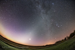 "Venus shines brightly, and nearly at its brightest at magnitude -4.7, in the dawn sky on a very frosty morning at 5 am, on September 17, 2015, from home in southern Alberta. Venus appears amid the faint glow of the Zodiacal Light, sometimes called the ""False Dawn,"" stretching vertically from the dawn horizon in the east, up and to the right, and reaching the Milky Way that runs down the frame from top centre to bottom right. Orion and the winter stars shine in the Milky Way, with Sirius above the trees at lower right. The Beehive Cluster, M44, appears as the small group of stars above Venus. The Pleiades, M45, is at top right. Mars is the brightest object left of Venus, with the bright star Regulus just below it and rising in the east. The stars of the Big Dipper are at far left at the edge of the frame. The sky is beginning to brighten with the real glow of morning.  This is a stack of 4 x 2-minute exposures, tracked and mean combine stacked, for the sky and 2 x 2-minute exposures, untracked and stacked, for the ground to minimize blurring in the starlit ground. The Canon 6D was on the iOptron Sky-Tracker, shooting at ISO 1250 with the 15mm full-frame fish-eye lens at f/3.5. The stacking with a mean combine stack mode smooths noise in both sky and ground."