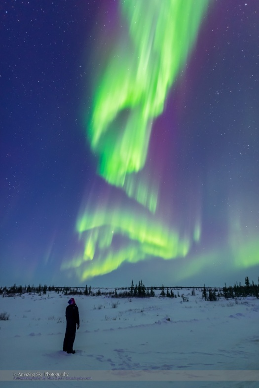 Aurora Watcher with Twilight Curtains (March 6, 2016)