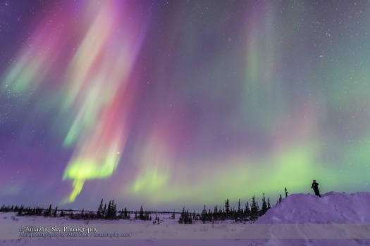 Gazing at a Colourful Twilight Aurora