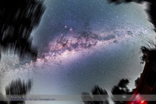 Milky Way Overhead Through Trees