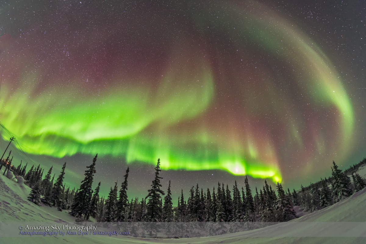 Auroral Arcs over Boreal Forest #2