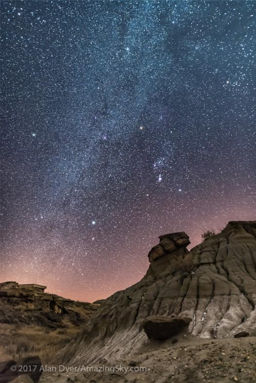 Winter Stars over Dinosaur Park