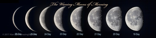Waning Moon in the Morning Series (with Labels)
