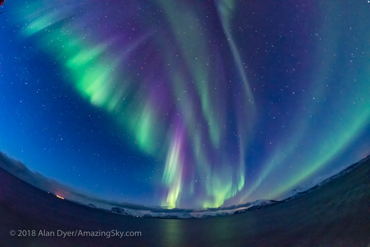 Purple Auroral Curtains in Twilight from Norway