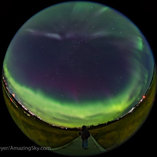 A selfie portrait under an all-sky display of Northern Lights in the city of Yellowknife, from the boardwalk at Rotary Park. This was on the night of Sept. 10/11, 2018 during a major solar storm, but in the subsiding hours after the sky cleared at about 2 am. The Big Dipper is at right. The Summer Triangle is at left. Cassiopeia is at the zenith. The view is looking northwest at centre. This is a mean stack of 6 exposures smoothed to reduce noise for the ground and one exposure for the sky and me, all 6 seconds at f/3.5 with the Sigma 8mm lens and Sony a7III at ISO 3200. The focus is soft.