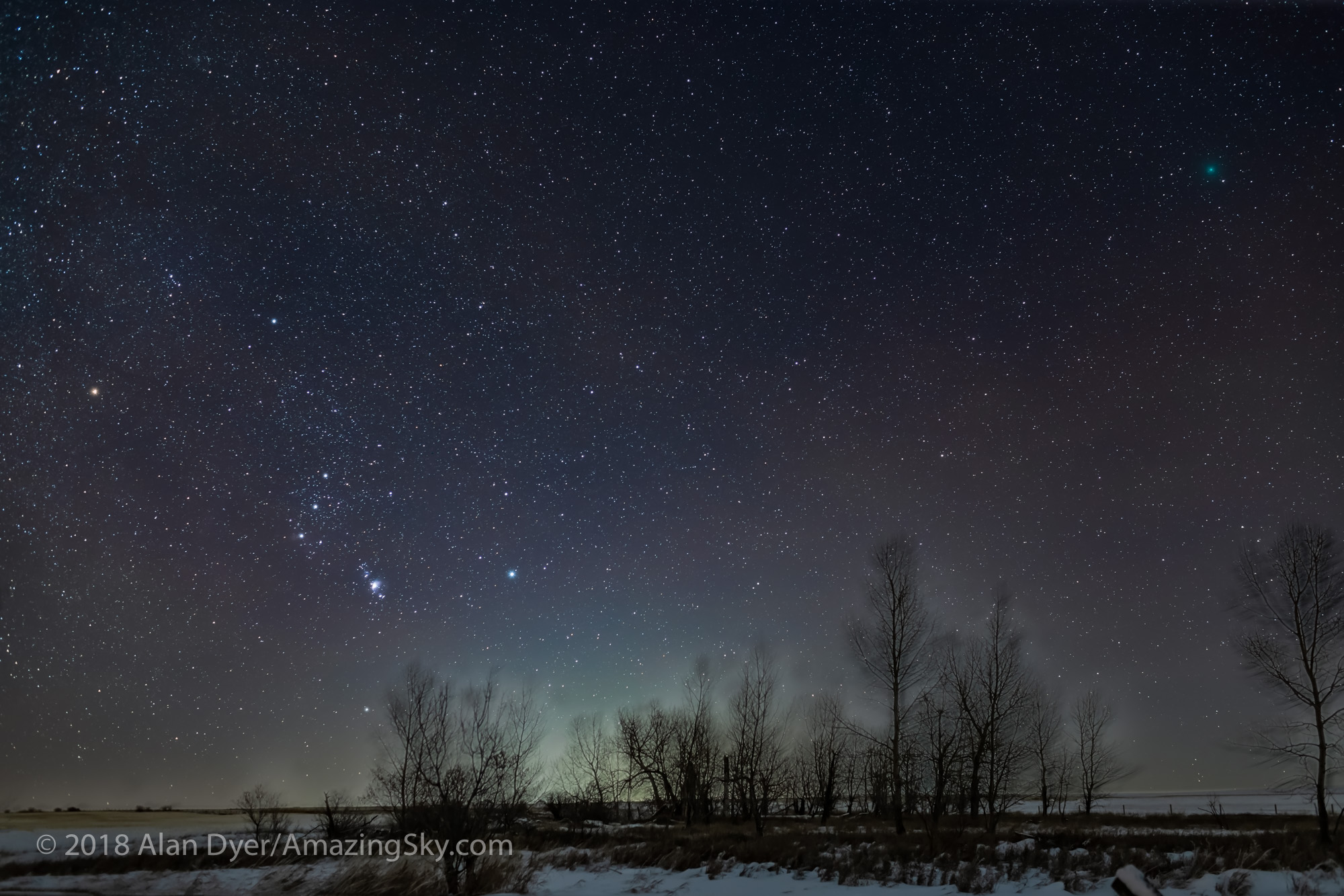 Winter Green Comet with Orion