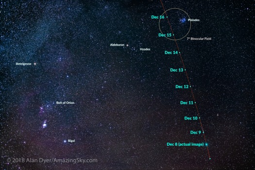Comet Wirtanen Path Dec 8 to 16