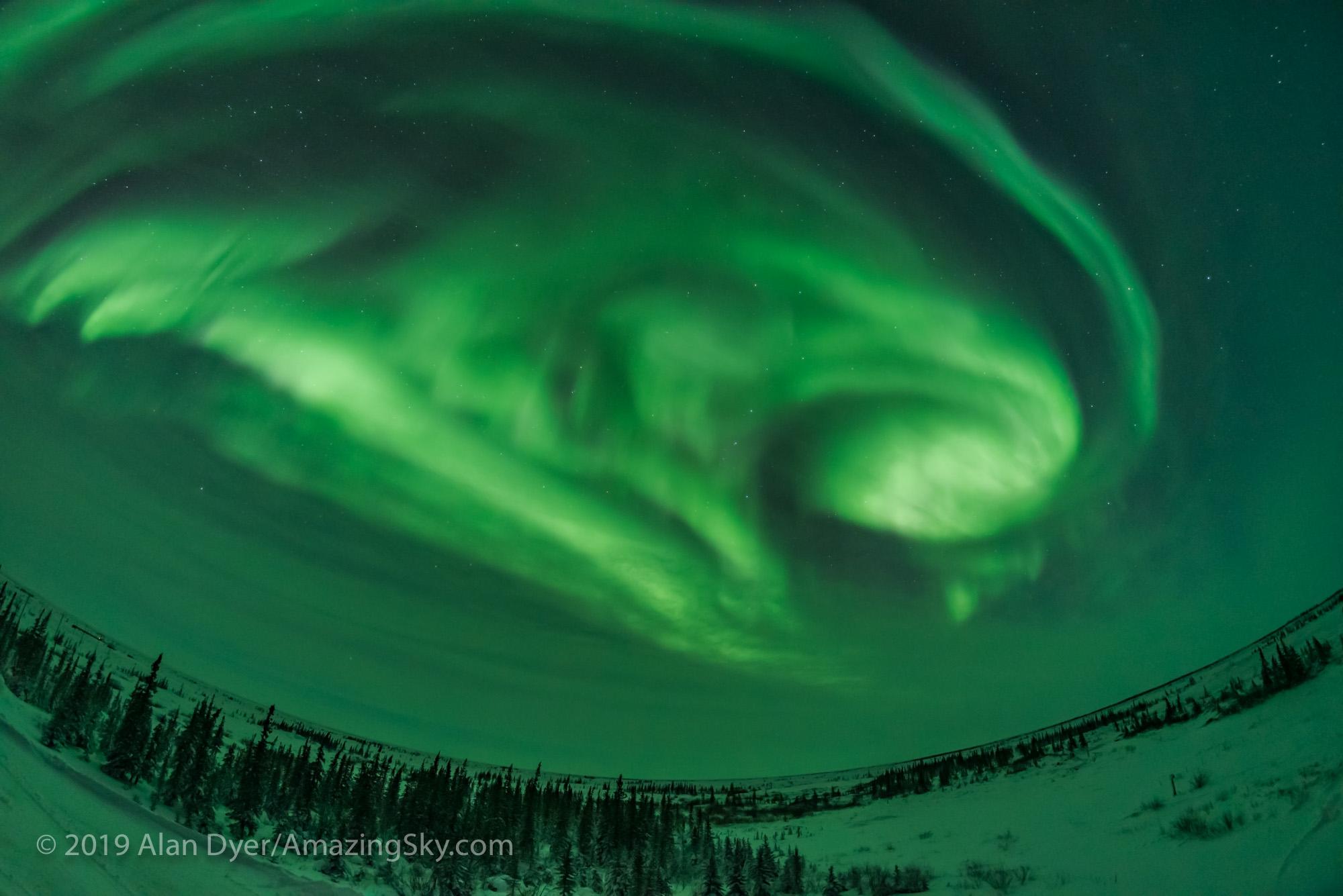 Auroral Arcs, Loops and Swirls (Feb 5, 2019) #5 of 5