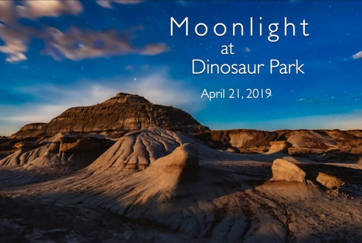 Moonlight at Dino Park Title