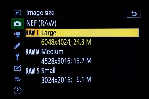 Z6 Menu - Raw Formats