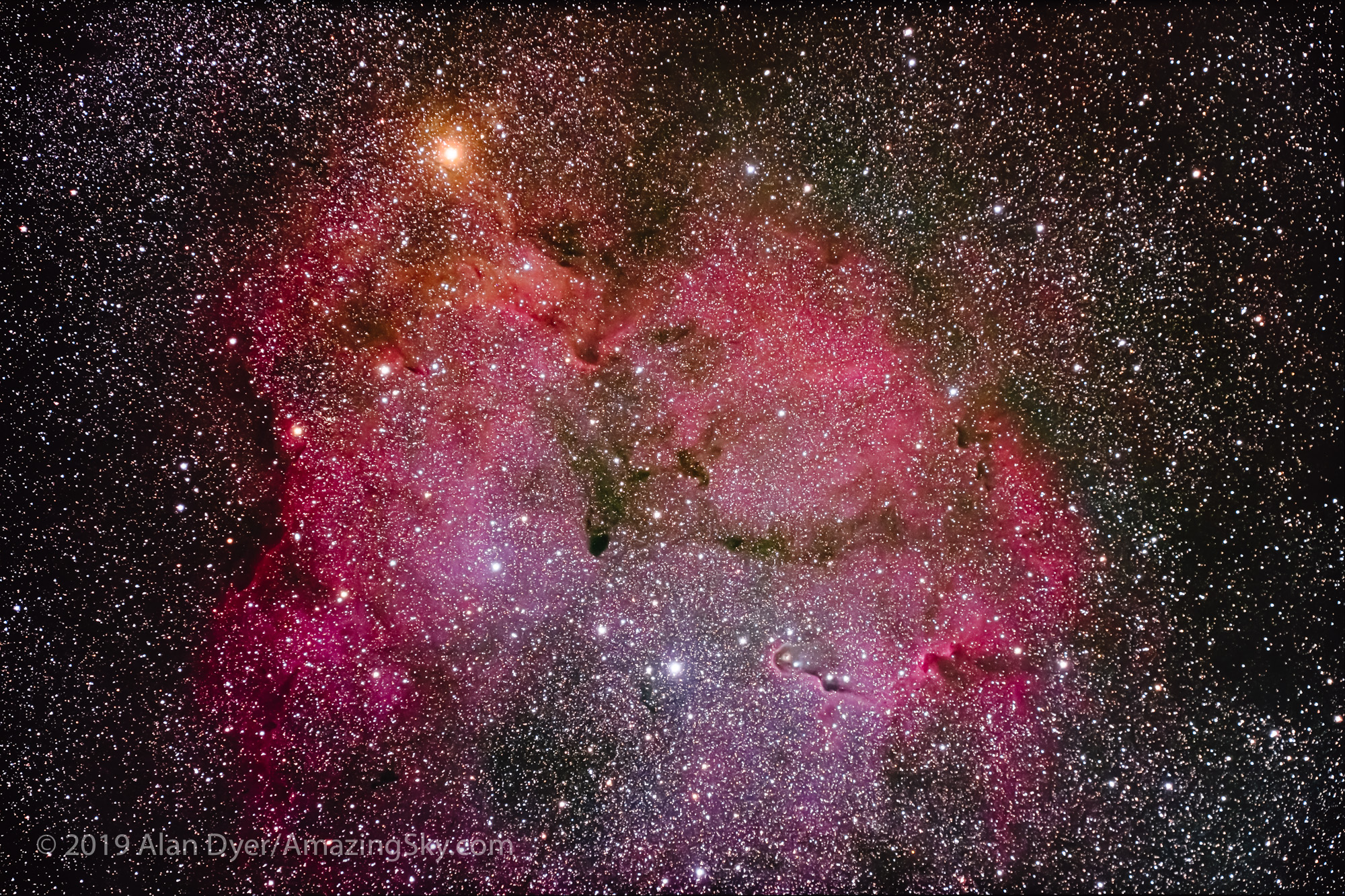 IC 1396 in Cepheus (Traveler and EOS Ra)