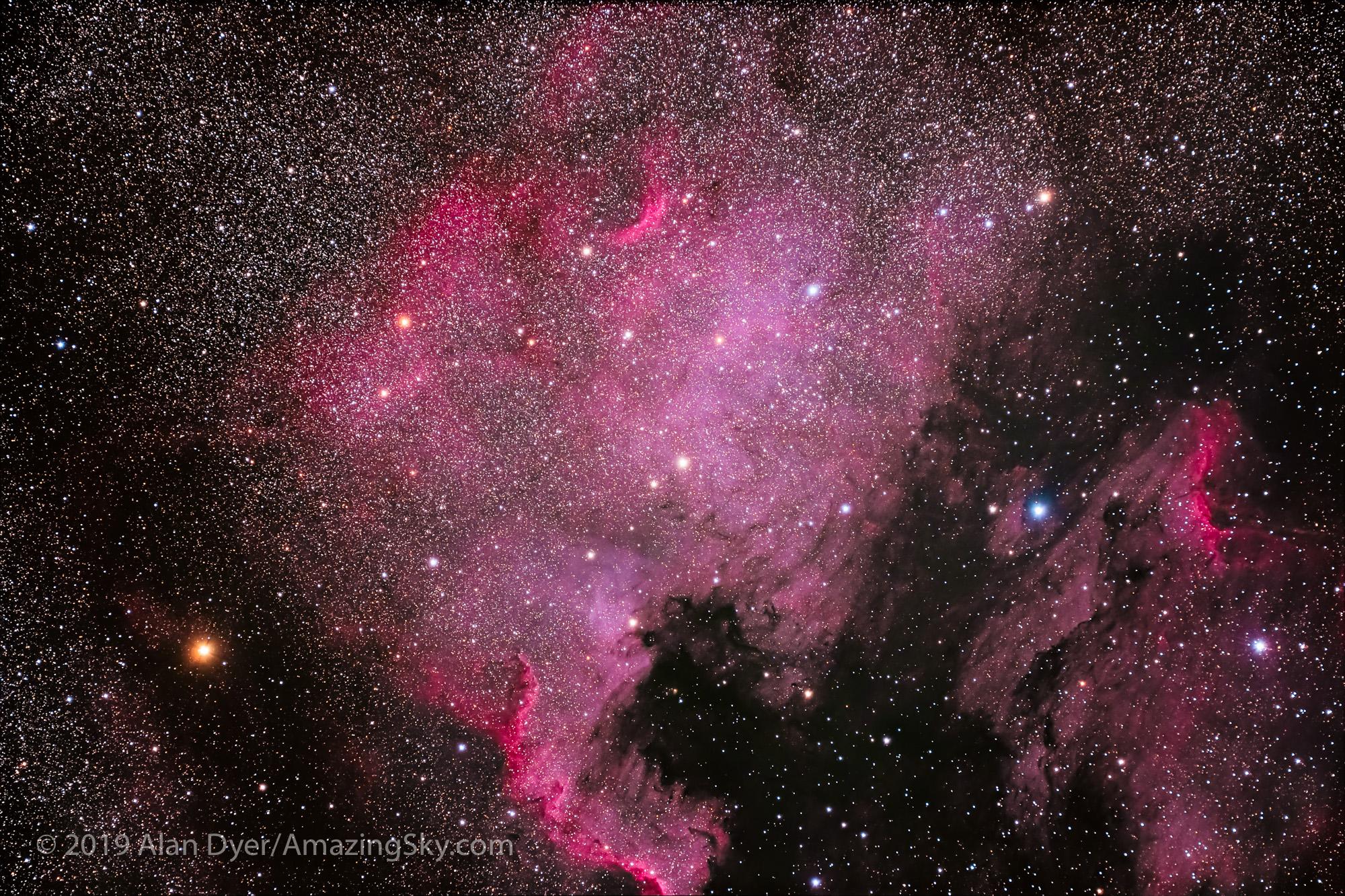 NGC 7000 North America Nebula (105mm Apo & Canon EOS Ra)
